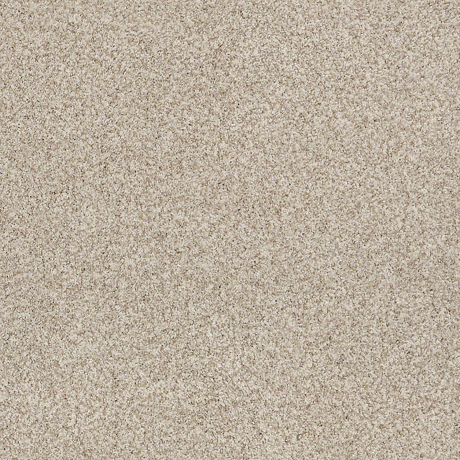 STAINMASTER LiveWell Robust II Flawless Textured Interior Carpet