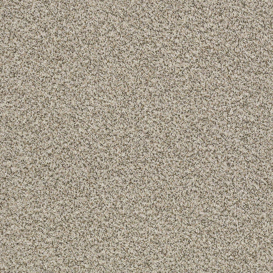 STAINMASTER LiveWell Robust II 12-ft W x Cut-to-Length Inspired Textured Interior Carpet