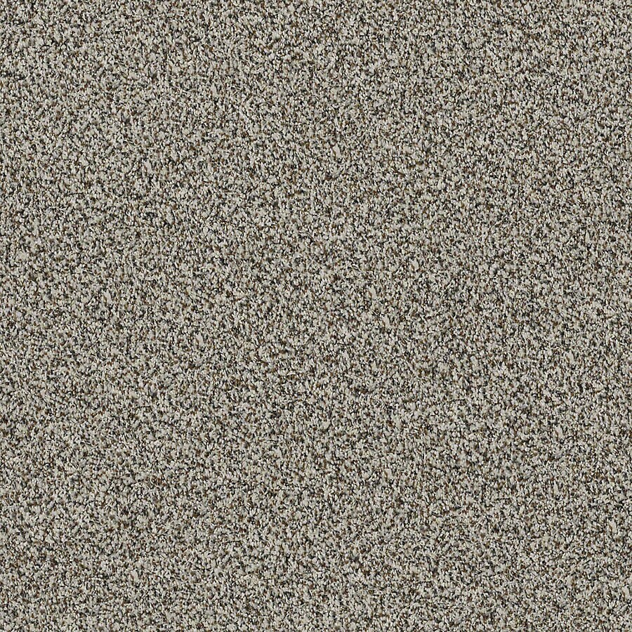 STAINMASTER LiveWell Robust II 12-ft W x Cut-to-Length City Loft Textured Interior Carpet