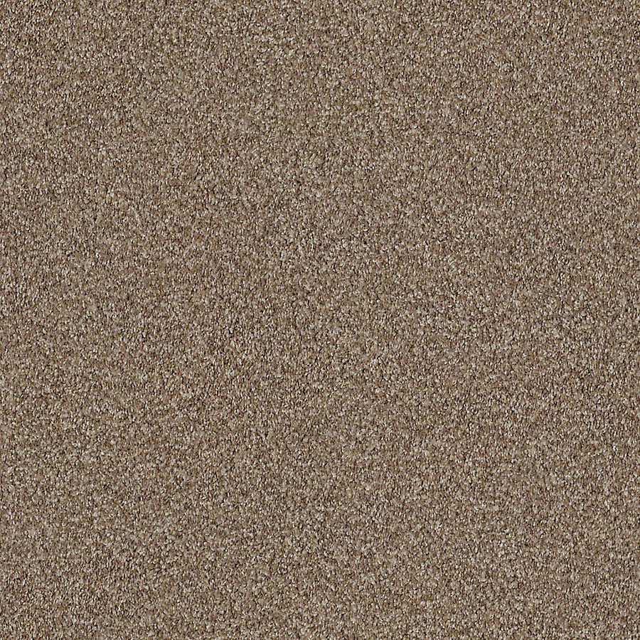 STAINMASTER LiveWell Robust II 12-ft W x Cut-to-Length Peaceful Textured Interior Carpet