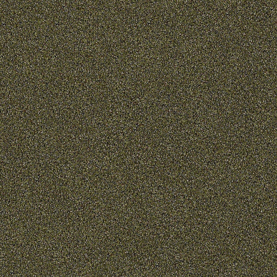STAINMASTER LiveWell Robust II 12-ft W x Cut-to-Length Safari Textured Interior Carpet