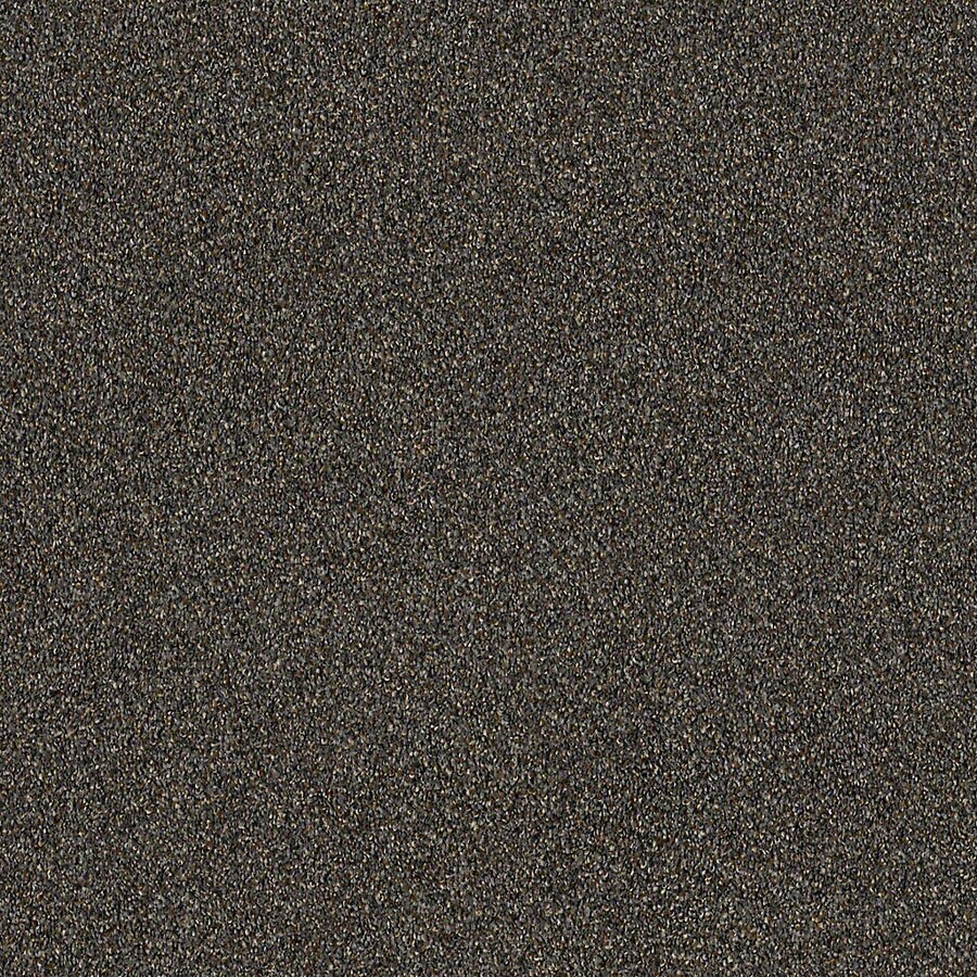 STAINMASTER LiveWell Robust II Metropolitan Textured Interior Carpet