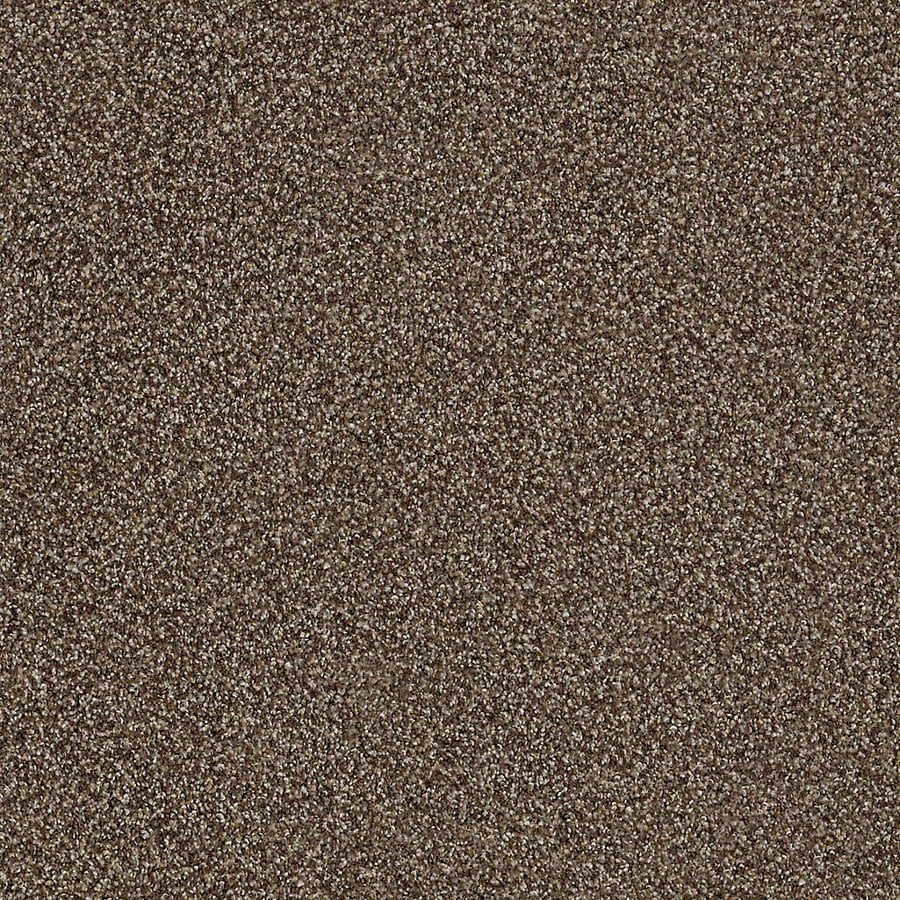 STAINMASTER LiveWell Robust II Tea Room Textured Interior Carpet
