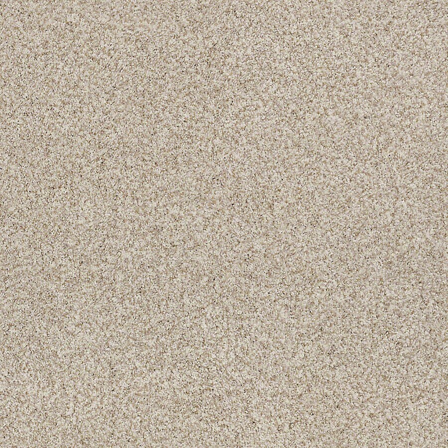 STAINMASTER LiveWell Robust III 12-ft W x Cut-to-Length Flawless Textured Interior Carpet