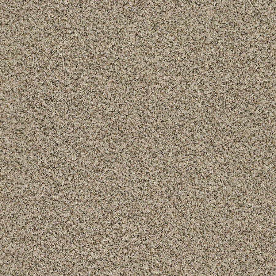 STAINMASTER LiveWell Robust III Oatmeal Textured Interior Carpet