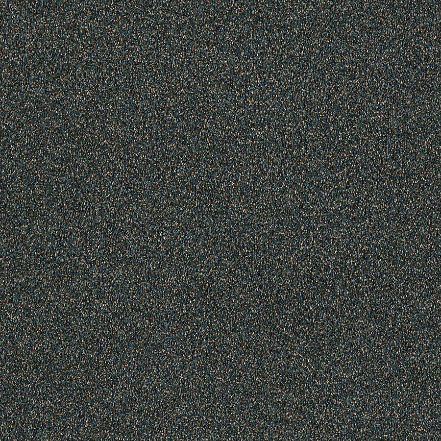 STAINMASTER LiveWell Robust III 12-ft W x Cut-to-Length Fiji Textured Interior Carpet