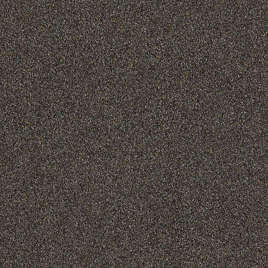 STAINMASTER LiveWell Robust III 12-ft W x Cut-to-Length Metropolitan Textured Interior Carpet
