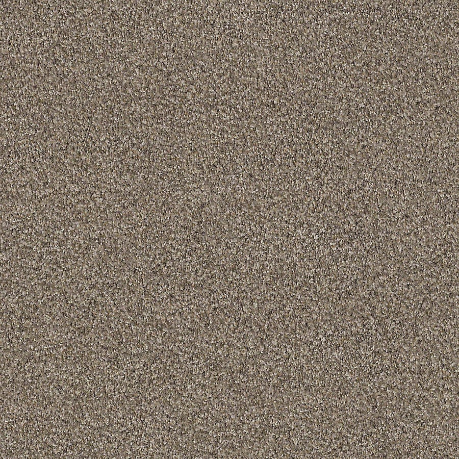 STAINMASTER LiveWell Robust III 12-ft W x Cut-to-Length Granite Textured Interior Carpet