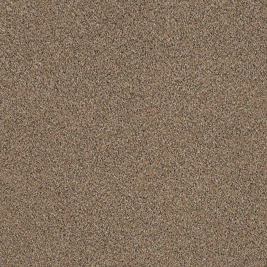 STAINMASTER LiveWell Robust III Retreat Textured Interior Carpet