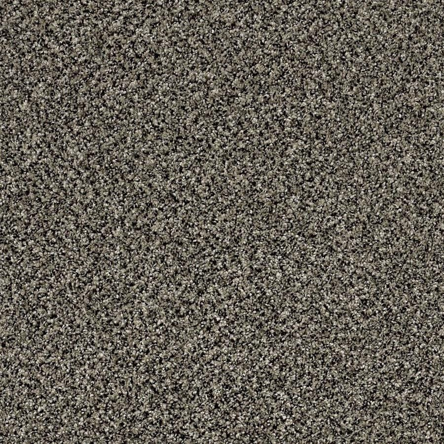 STAINMASTER Essentials Palacial I Timber Wolf Textured Interior Carpet