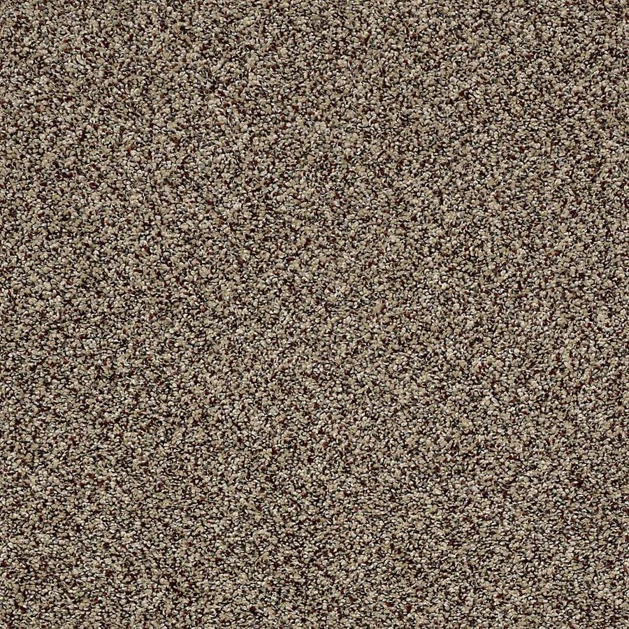 STAINMASTER Essentials Palacial I 15-ft W x Cut-to-Length Worn Path Textured Interior Carpet
