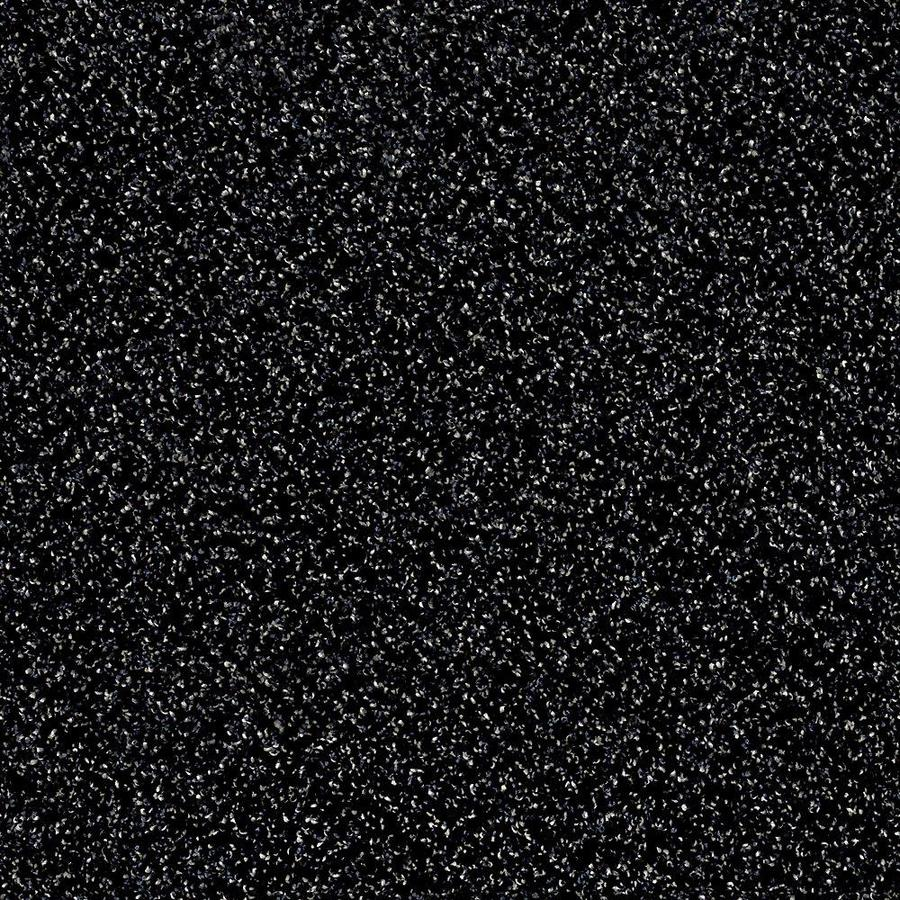 STAINMASTER Essentials Palacial II 15-ft W x Cut-to-Length Under Water Textured Interior Carpet