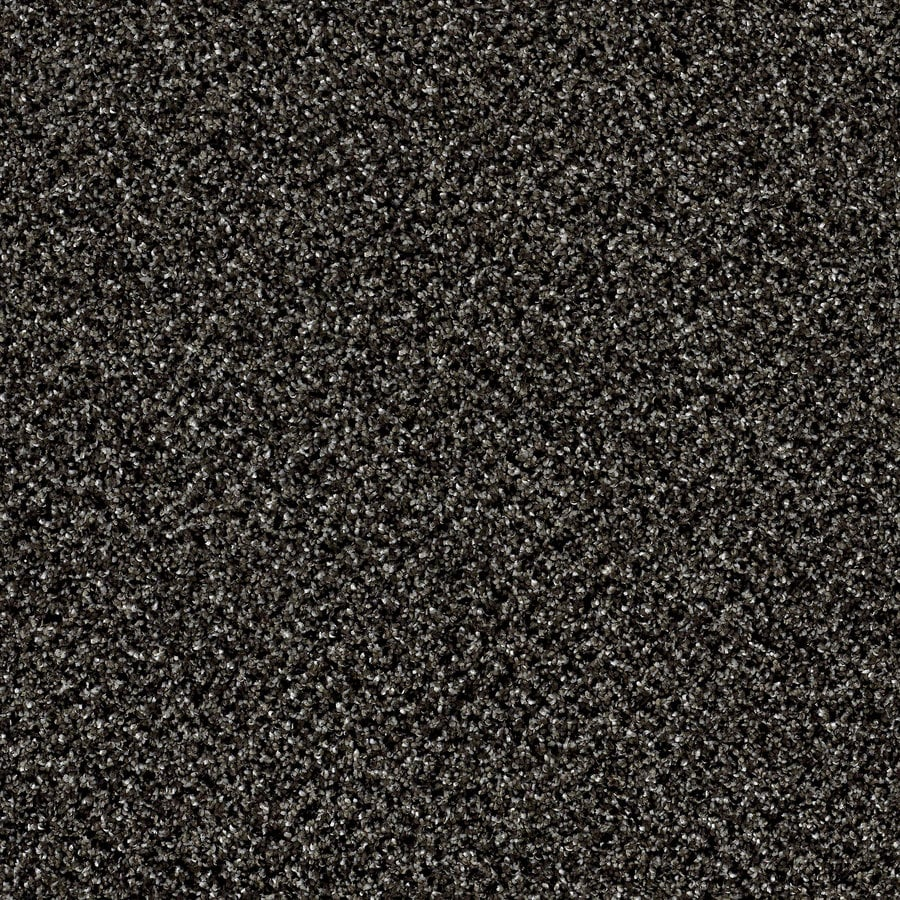 STAINMASTER Essentials Palacial II 15-ft W x Cut-to-Length Iron Age Textured Interior Carpet