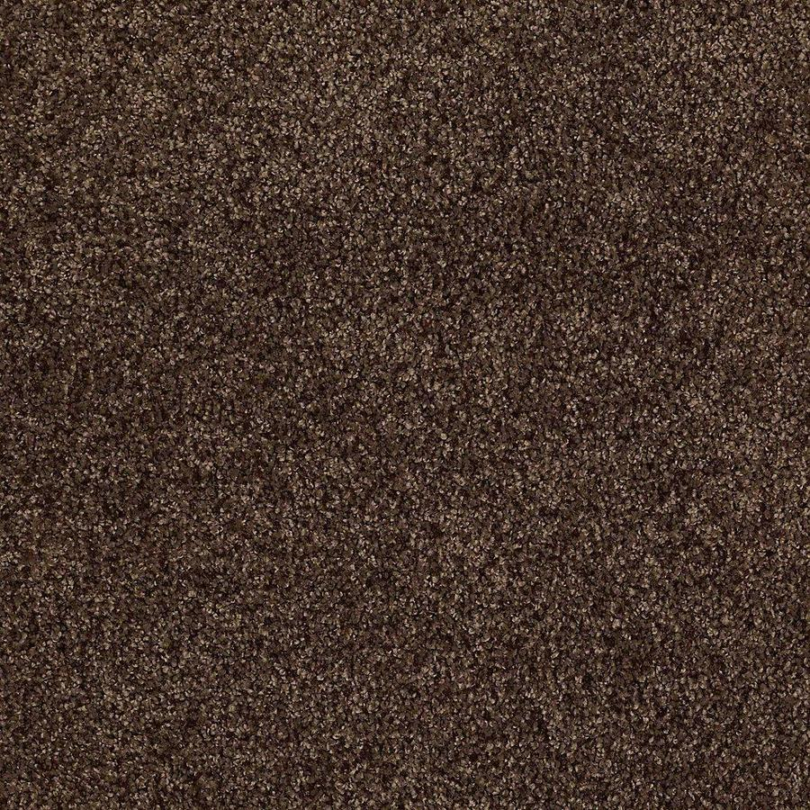 STAINMASTER TruSoft Advanced Beauty I 12-ft W x Cut-to-Length Buckeye Textured Interior Carpet