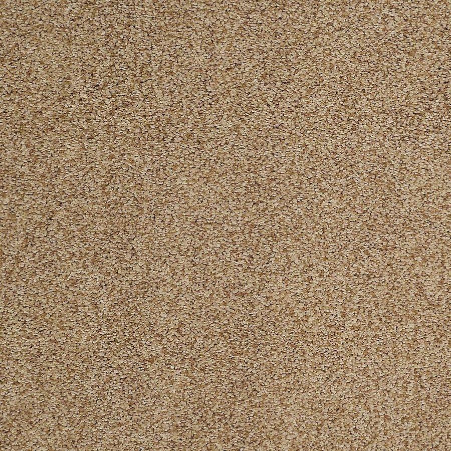 STAINMASTER TruSoft Advanced Beauty I Pier Textured Interior Carpet
