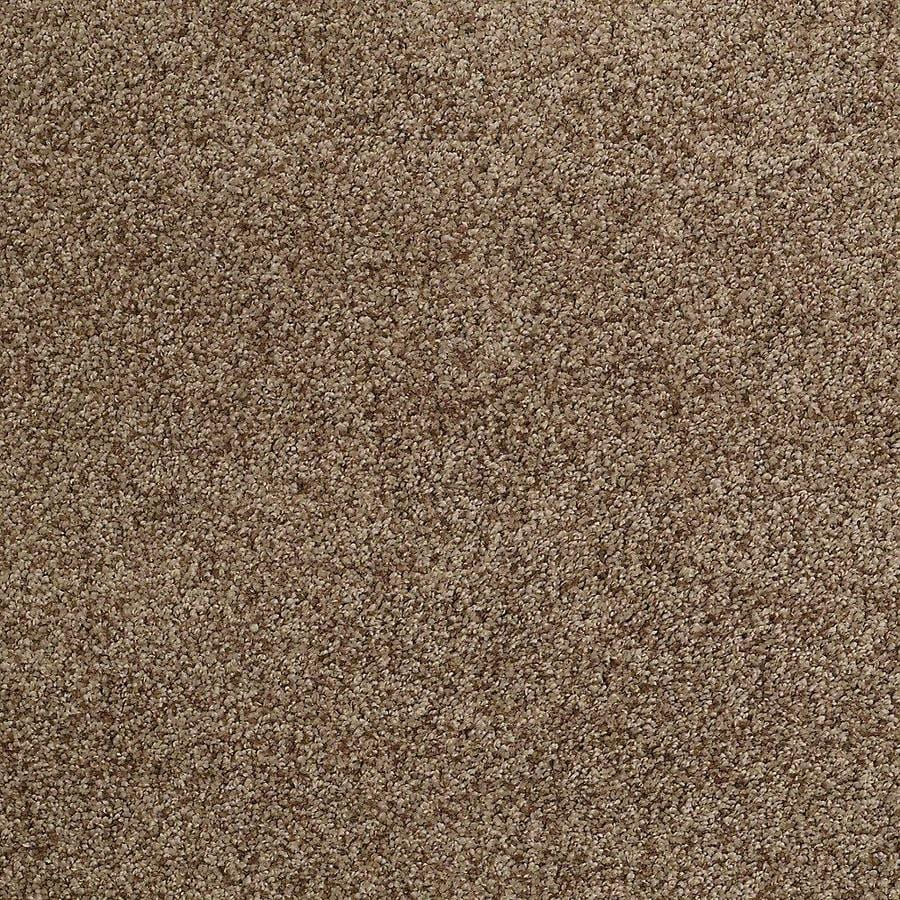 STAINMASTER TruSoft Advanced Beauty I Leather Strap Textured Interior Carpet