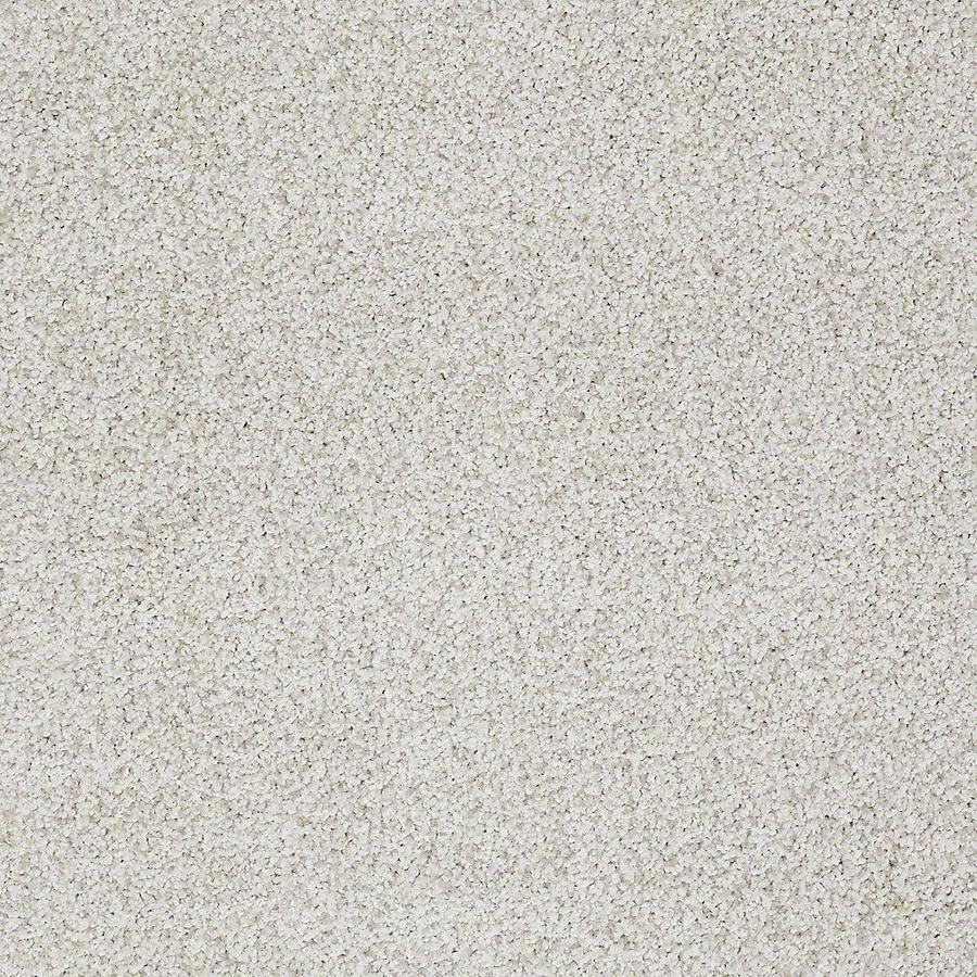 STAINMASTER TruSoft Advanced Beauty I 15-ft W x Cut-to-Length Morning Dew Textured Interior Carpet
