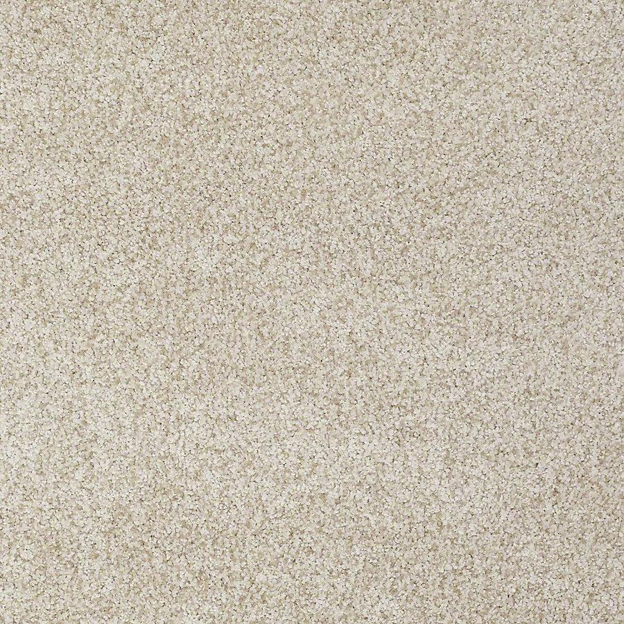 STAINMASTER TruSoft Advanced Beauty I 15-ft W x Cut-to-Length Nutria Textured Interior Carpet