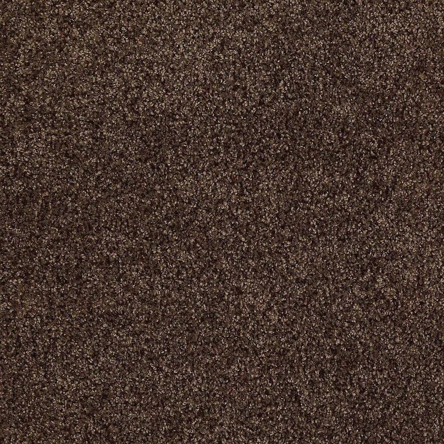STAINMASTER TruSoft Advanced Beauty II 12-ft W x Cut-to-Length Buckeye Textured Interior Carpet
