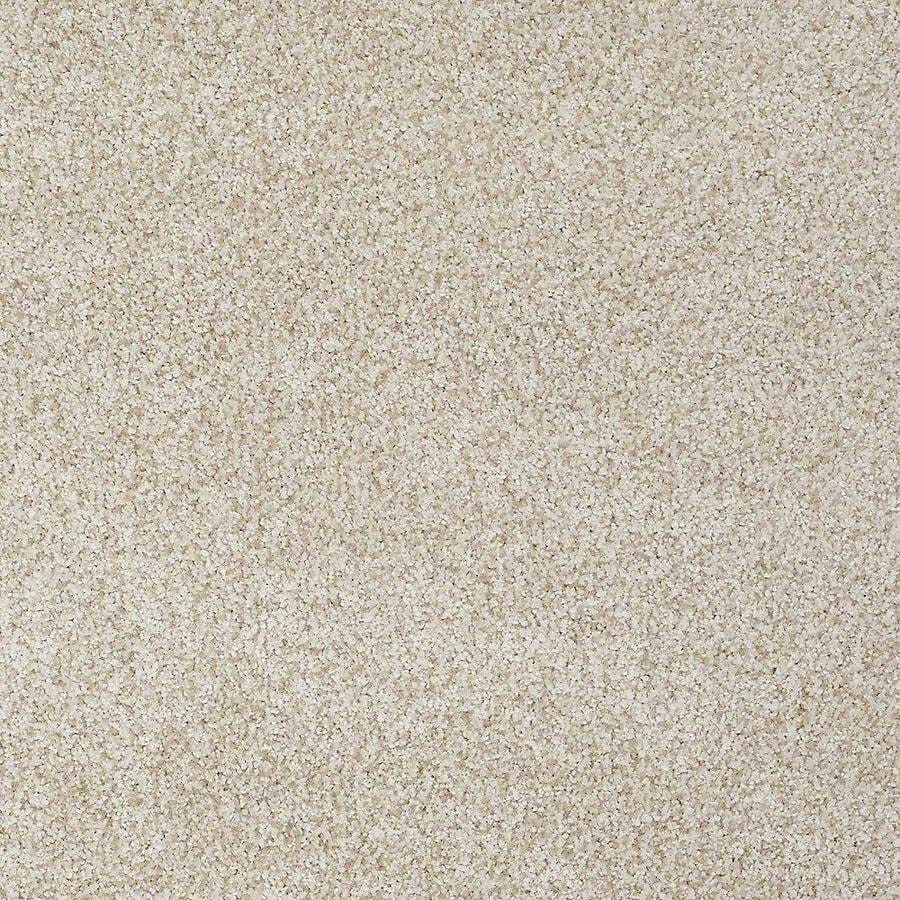 STAINMASTER TruSoft Advanced Beauty II 15-ft W x Cut-to-Length Nutria Textured Interior Carpet