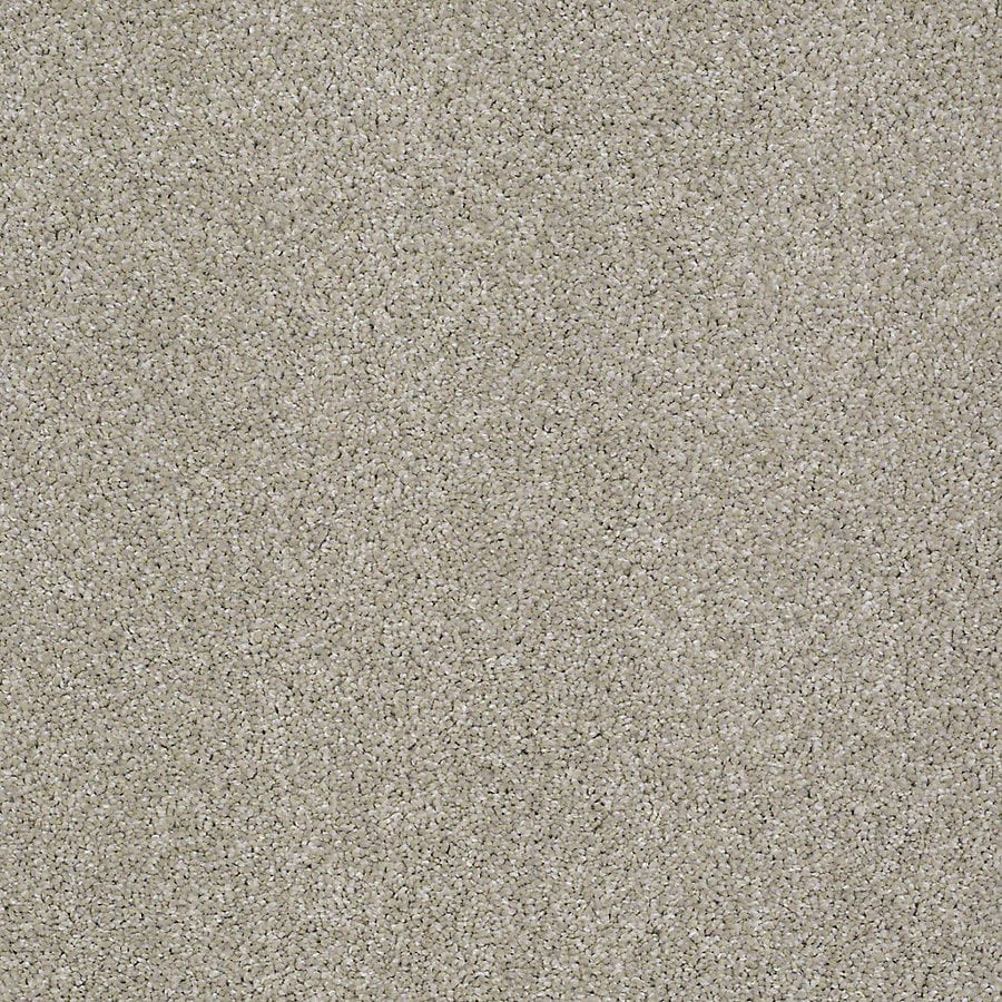 STAINMASTER PetProtect Bark to the Future I 12-ft W x Cut-to-Length Gentle Breeze Textured Interior Carpet