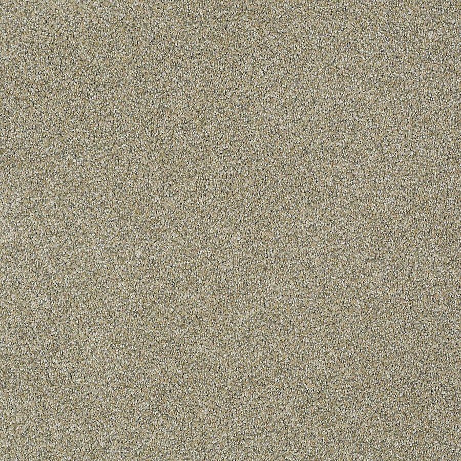 STAINMASTER PetProtect Bark to The Future I Sands Of Time Textured Interior Carpet