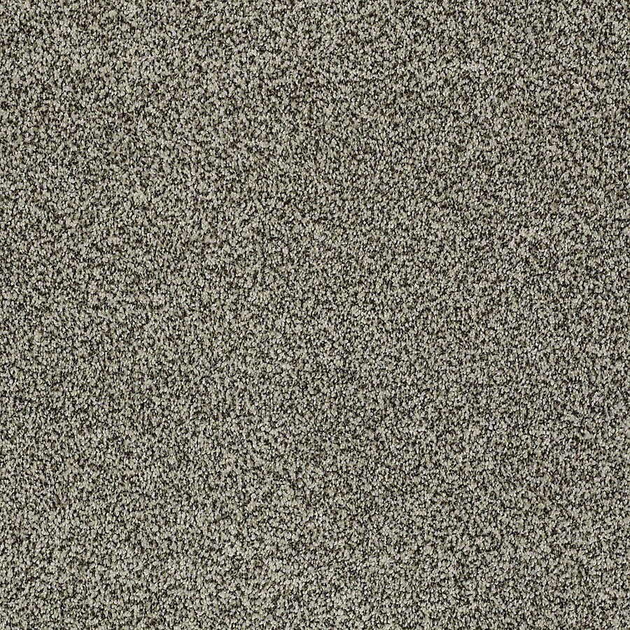 STAINMASTER PetProtect Bark to The Future I Drifter Textured Interior Carpet