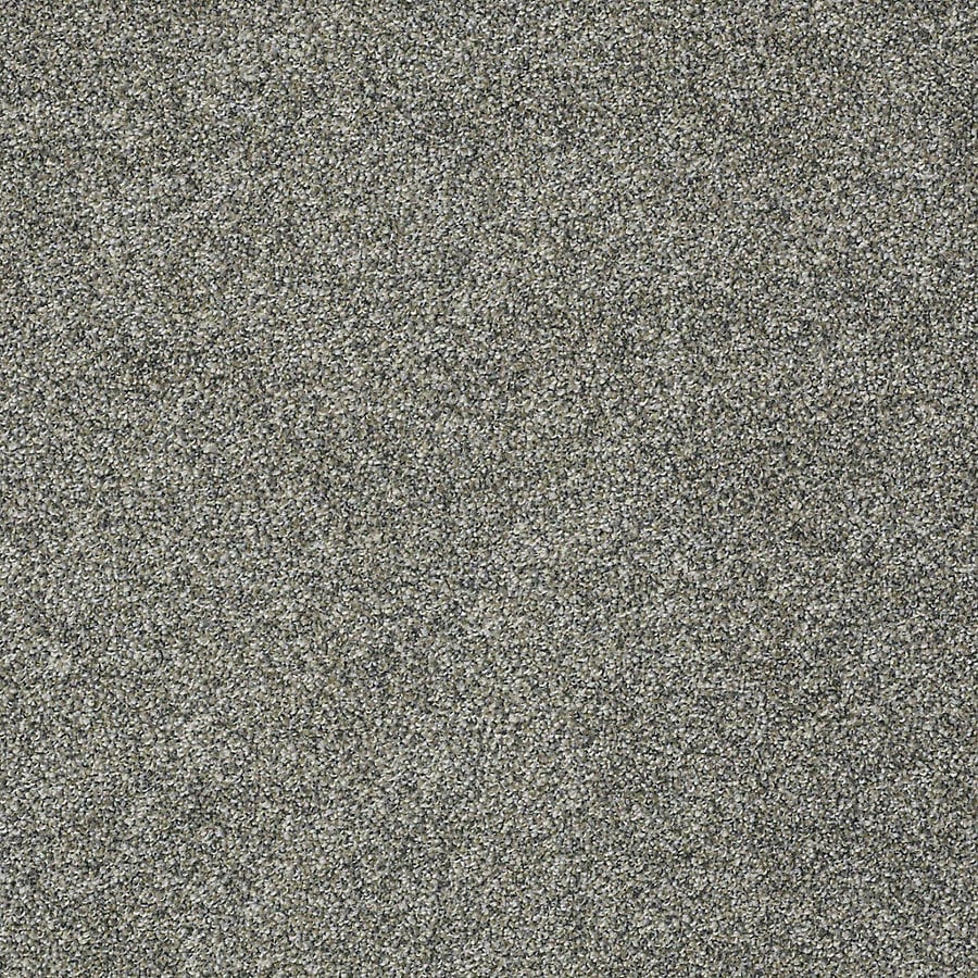STAINMASTER PetProtect Bark to the Future I 12-ft W x Cut-to-Length Windy City Textured Interior Carpet