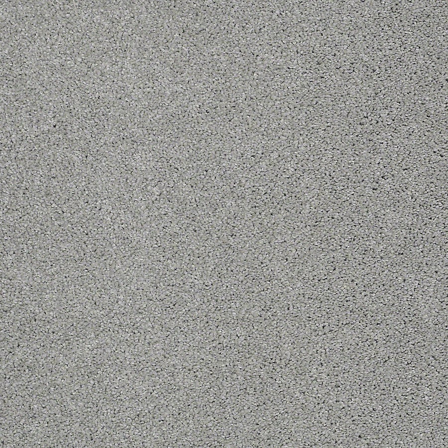 STAINMASTER PetProtect Bark to The Future I Glacier Textured Interior Carpet