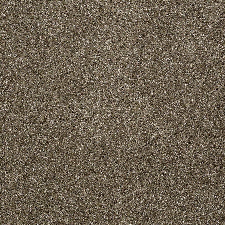 STAINMASTER PetProtect Bark to The Future I Boardwalk Textured Interior Carpet