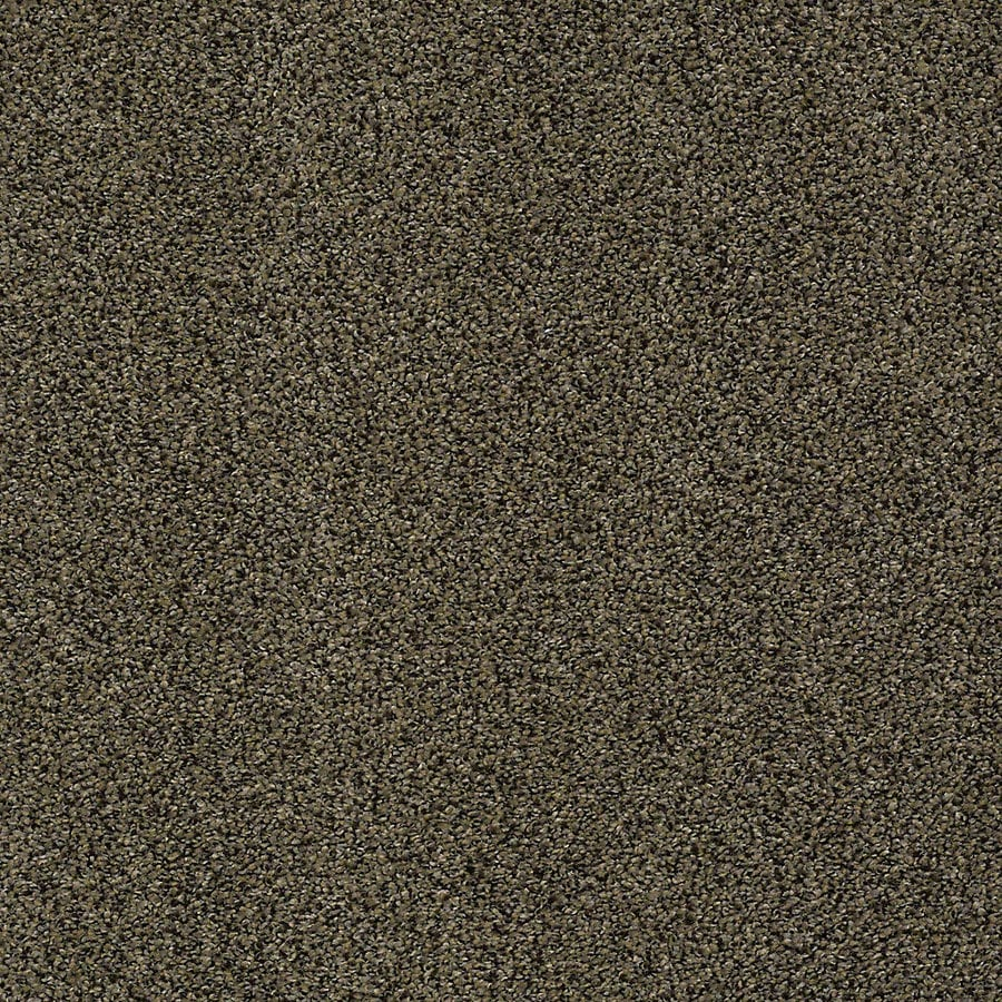STAINMASTER PetProtect Bark To The Future I 15-ft W Riverbank Textured Interior Carpet