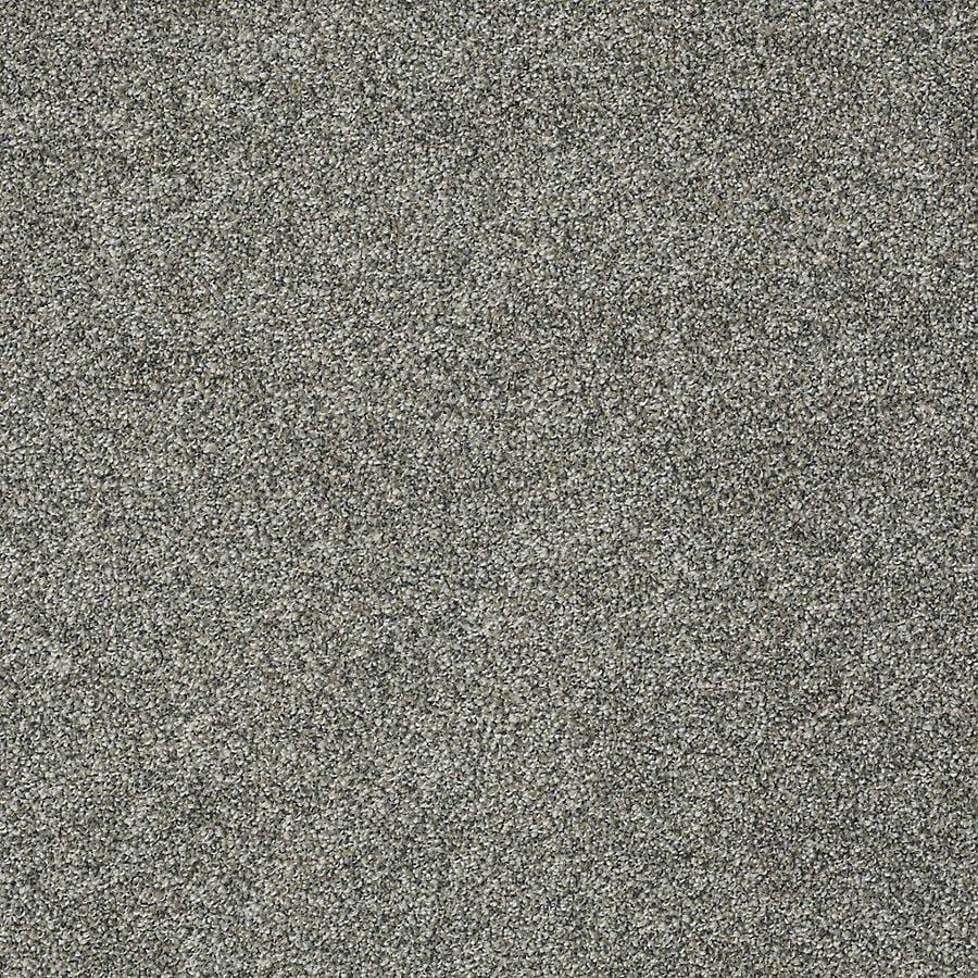 STAINMASTER PetProtect Bark to The Future II Windy City Textured Interior Carpet