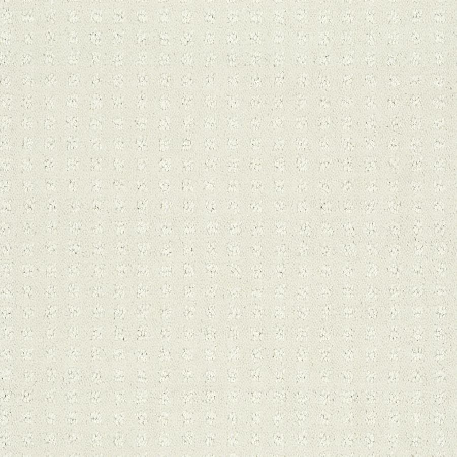 STAINMASTER Cornerstone Honorable Lambs Wool 12-ft W x Cut-to-Length Lambs Wool Pattern Interior Carpet