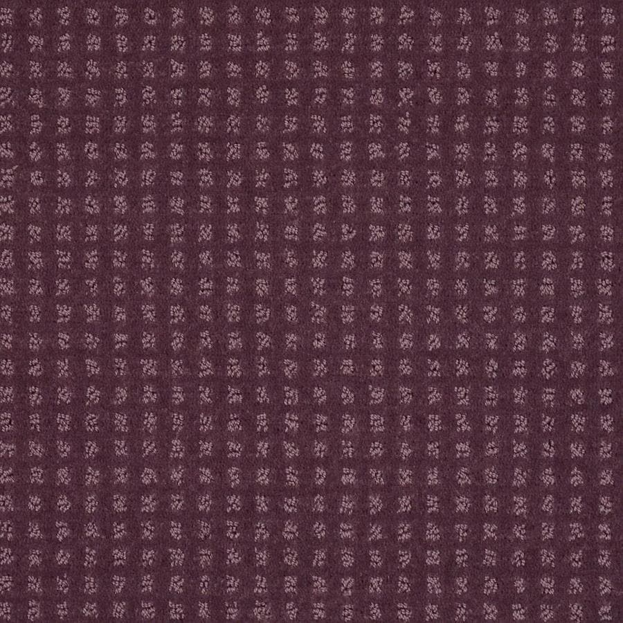 STAINMASTER Cornerstone Honorable Sugar Plum 12-ft W x Cut-to-Length Sugar Plum Pattern Interior Carpet
