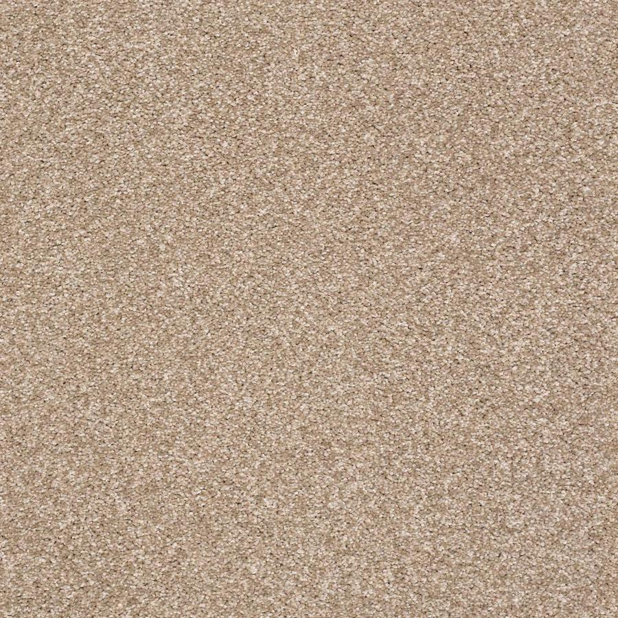 Shaw Cornerstone Ignite Flare 12-ft W x Cut-to-Length Flare Textured Interior Carpet