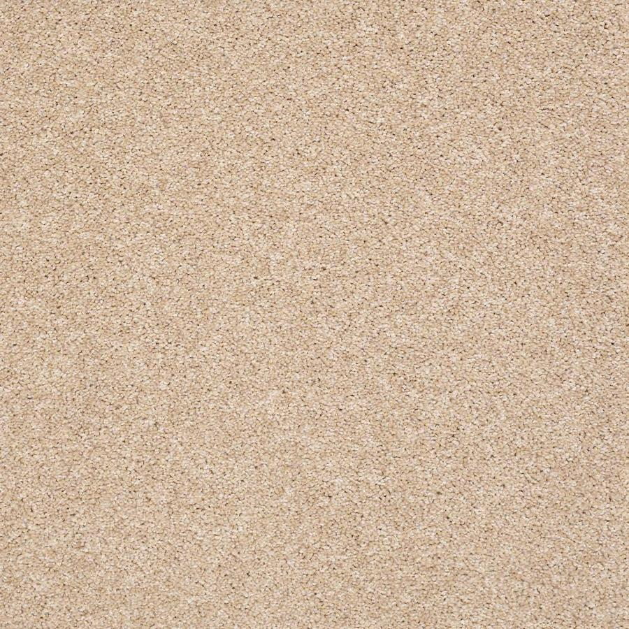 Shaw Cornerstone Inflame Vitalize 12-ft W x Cut-to-Length Vitalize Textured Interior Carpet
