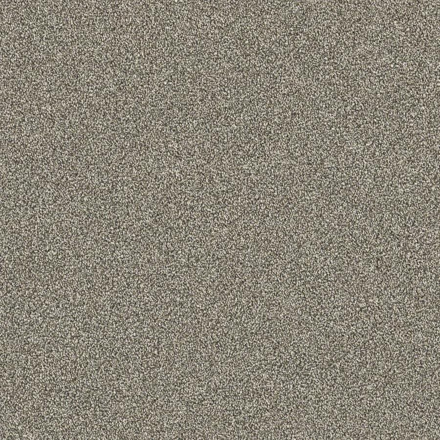 Stainmaster Petprotect Best In Show Finish 12 Ft Plush Interior Carpet