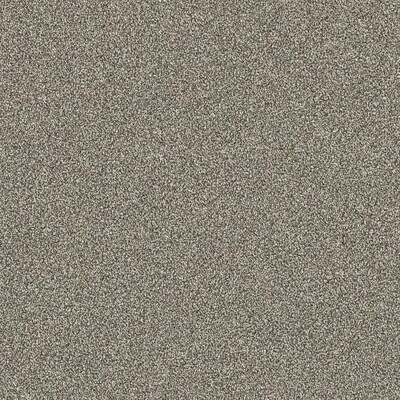 Stainmaster Petprotect Best In Show Finish 12 Ft Plush