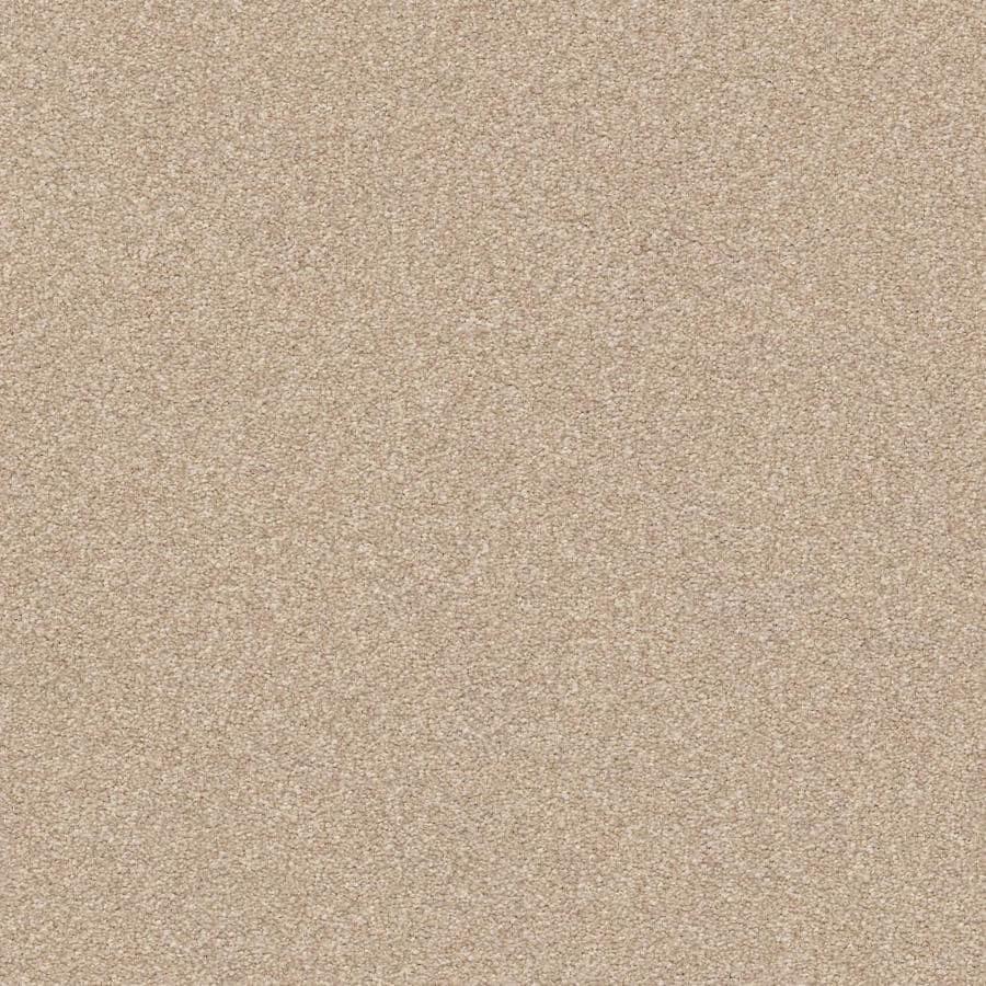 STAINMASTER PetProtect Best In Show Premium 12-ft W x Cut-to-Length Premium Plush Interior Carpet