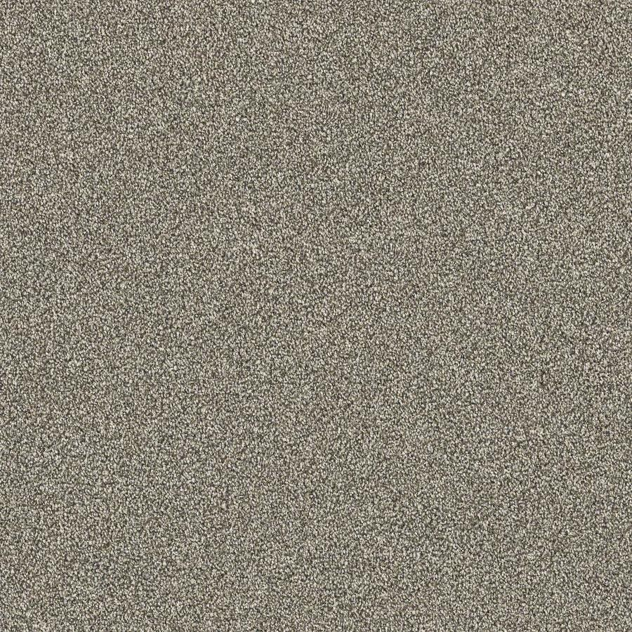 STAINMASTER PetProtect Pedigree Finish 12-ft W x Cut-to-Length Finished Plush Interior Carpet