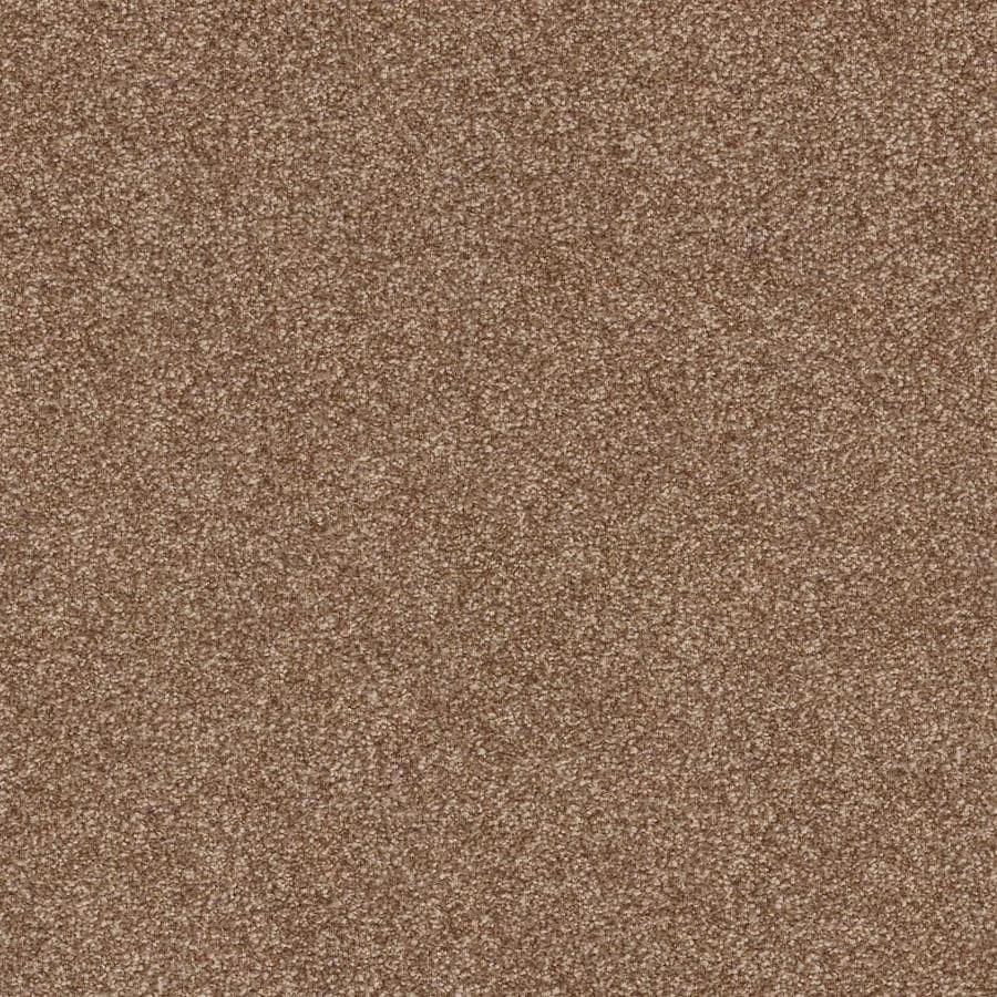Pet Protect Carpet Lowes Taraba Home Review