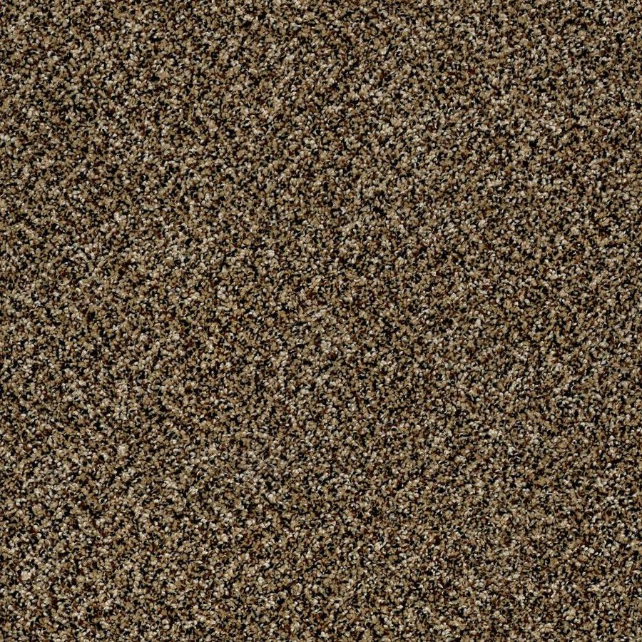 Shaw Wide Width Statuette I  Sandpiper 12-ft W x Cut-to-Length Sandpiper Textured Interior Carpet