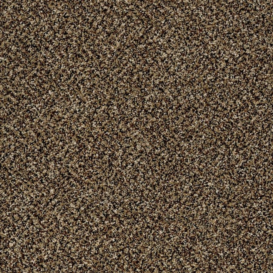 Shaw Wide Width Statuette II  Sandpiper 15-ft W x Cut-to-Length Sandpiper Textured Interior Carpet