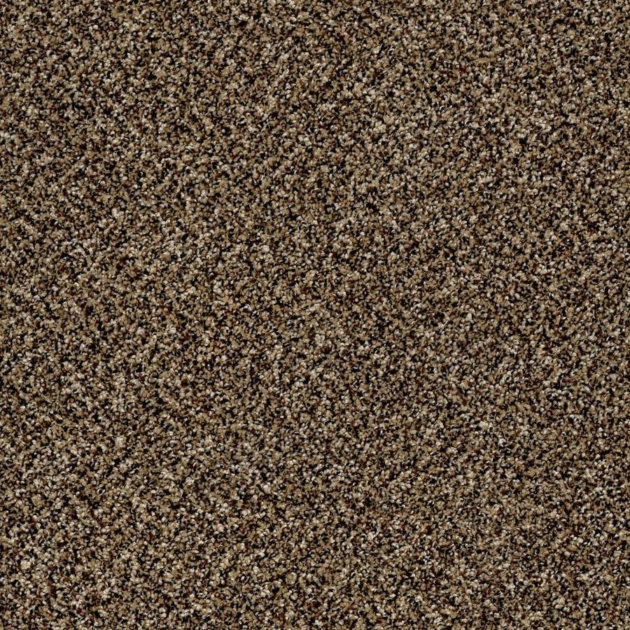 Shaw Wide Width Statuette III  Sandpiper 15-ft W x Cut-to-Length Sandpiper Textured Interior Carpet