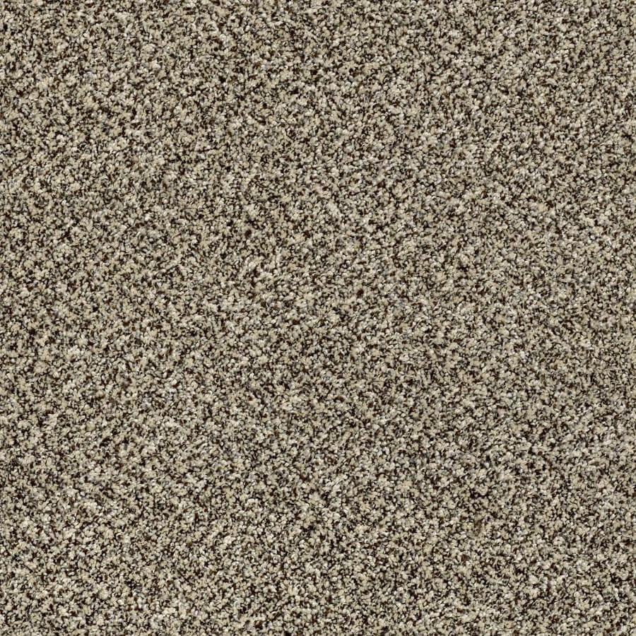 Shaw Wide Width Statuette III  Cape Town 15-ft W x Cut-to-Length Cape Town Textured Interior Carpet