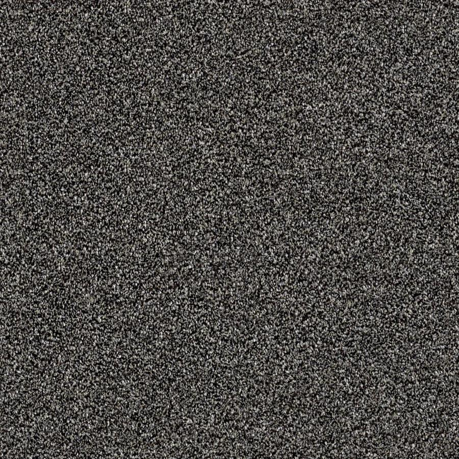 Shaw Wide Width Sculpture I  Soot 12-ft W x Cut-to-Length Soot Textured Interior Carpet