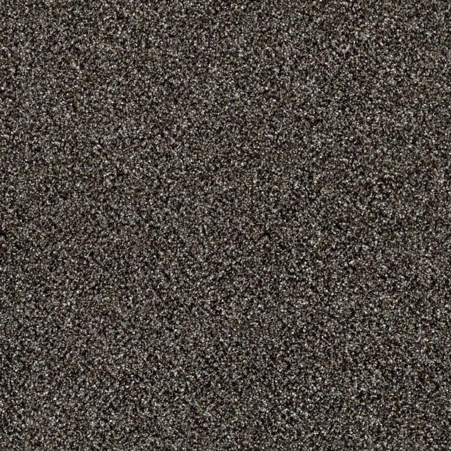 Shaw Wide Width Sculpture I  Boulder 12-ft W x Cut-to-Length Boulder Textured Interior Carpet