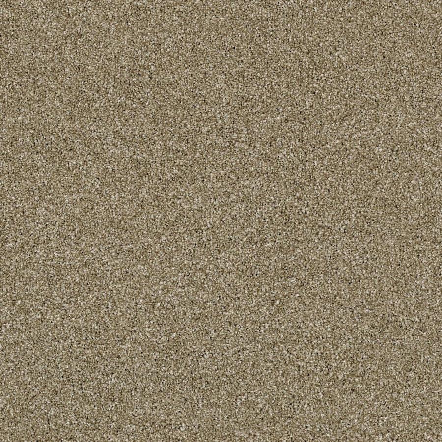 Shaw Wide Width Sculpture I  Biscotti 15-ft W x Cut-to-Length Biscotti Textured Interior Carpet