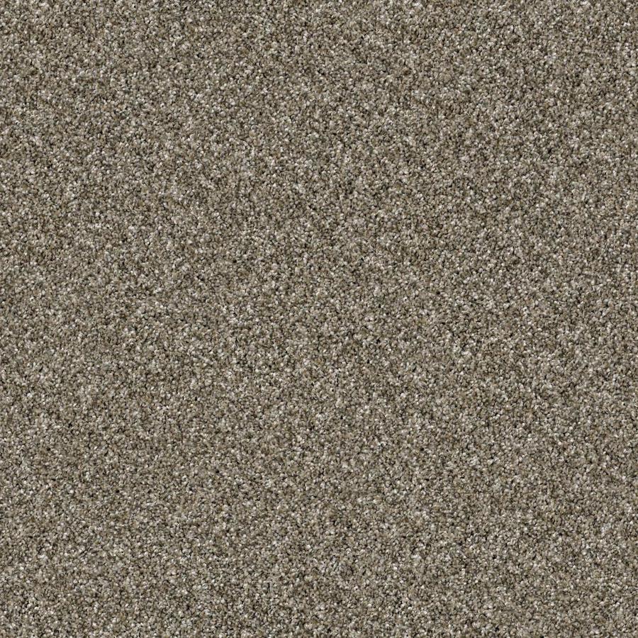 Shaw Wide Width Sculpture I  Arbor 15-ft W x Cut-to-Length Arbor Textured Interior Carpet