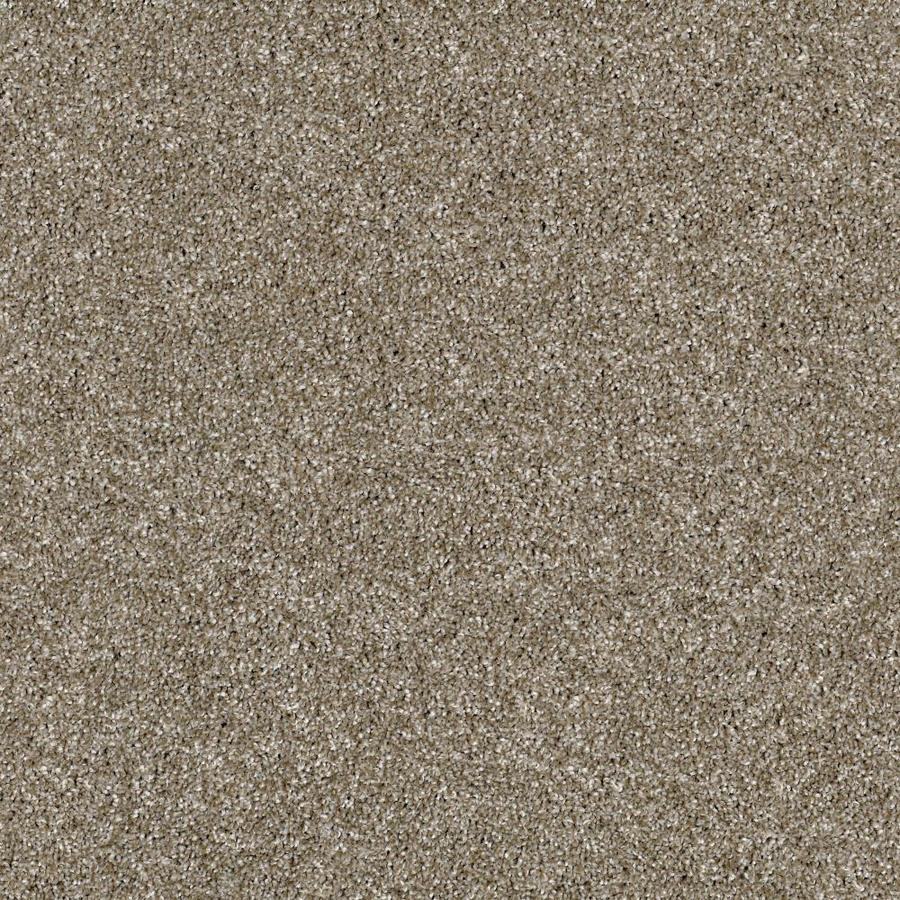 Shaw Wide Width Sculpture II  Cameo 12-ft W x Cut-to-Length Cameo Textured Interior Carpet